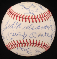 500 Home Run Club ONL Baseball Signed by (21) with Mickey Mantle, Ted Williams, Hank Aaron, Willie Mays, Ernie Banks, Frank Robinson (PSA LOA)