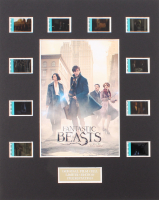 """""""Fantastic Beasts and Where to Find Them"""" Limited Edition Original Film/Movie Cell Display"""