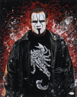 Sting Signed WWE 16x20 Photo (JSA COA) at PristineAuction.com