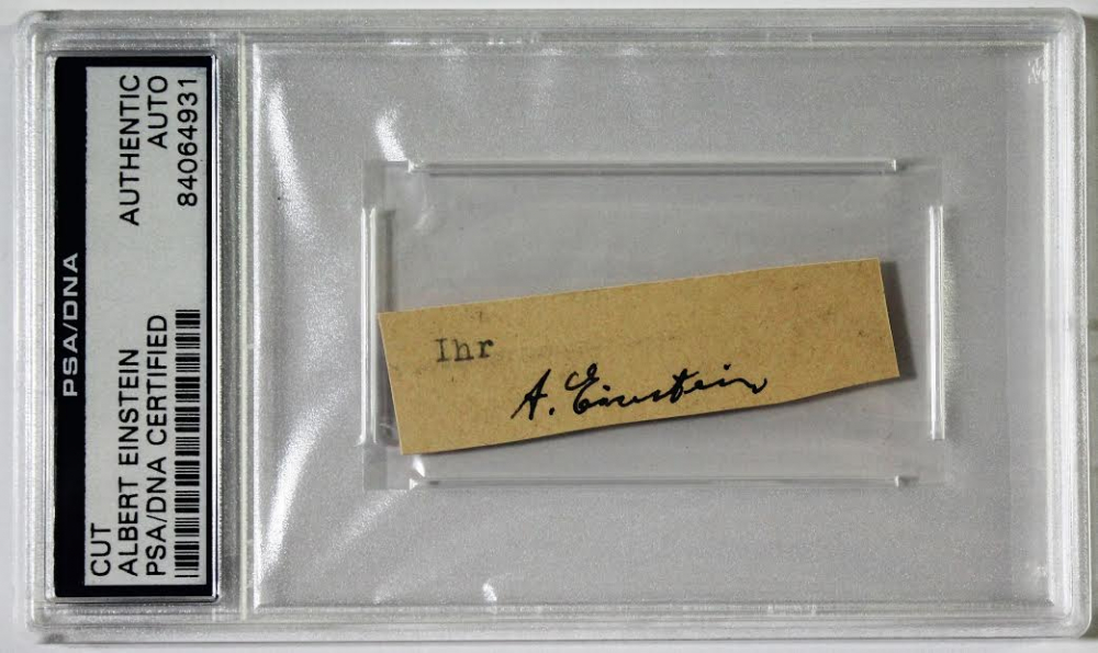 Albert Einstein Signed Cut (PSA Encapsulated) at PristineAuction.com