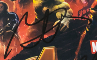 """Avengers: Infinity War"" 11x14 Photo Cast-Signed by (6) with Chris Hemsworth, Chadwick Boseman, Josh Brolin, Sebastian Stan, Dave Bautista (PSA LOA) at PristineAuction.com"