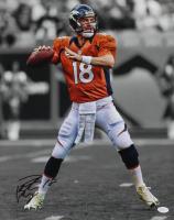 Peyton Manning Signed Denver Broncos 16x20 Photo (JSA COA)