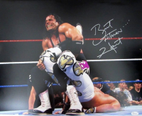"Bret Hart Signed WWE 16x20 Photo Inscribed ""Hitman"" (JSA COA) at PristineAuction.com"