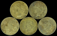 Lot of (5) 1923 Peace Silver Dollars