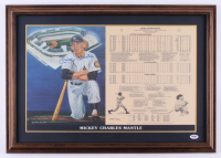 Mickey Mantle Signed LE Yankees 18x25.5 Custom Framed Career Highlight Stat Card Display (PSA LOA)