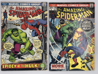 Lot of (2) 1973 Marvel Amazing Spider-Man 1st Series Comic Books with #119 & #120