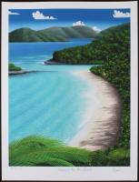 "Dan Mackin - ""Dancing on the Beach"" Signed Limited Edition 19x25 Fine Art Giclee #/275 (Mackin COA & PA LOA)"