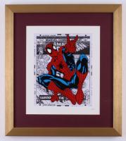 "Marvel ""Spider-Man"" 16x18 Custom Framed Hand Painted Animated Cel Display"