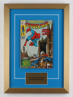 "April 1971 ""The Amazing Spider-Man #95"" 14x19 Custom Framed Comic Book Print Display"