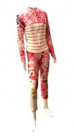 Lindsey Vonn Signed Team USA Skiing Suit (JSA COA)