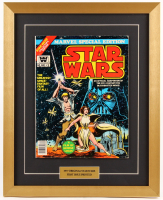 "Vintage 1977 ""Star Wars"" Issue #1 Marvel 17x21 Custom Framed Comic Book"