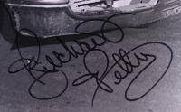 Richard Petty Signed NASCAR 16x20 Photo (PSA COA) at PristineAuction.com