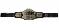 Conor McGregor Signed 24x64 Custom Framed UFC Championship Belt Display (Fanatics Hologram) at PristineAuction.com