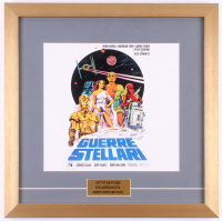 "1977 ""Guerre Stellari"" (Star Wars) 18x18 Custom Framed Italian Movie Poster Display"