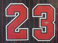 Michael Jordan Signed 35x43 Custom Framed Champions Jersey (UDA COA) at PristineAuction.com