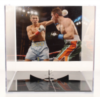 "Gennady Golovkin Signed Everlast Boxing Glove Set Inscribed ""GGG"" with Display Case (PSA COA) at PristineAuction.com"