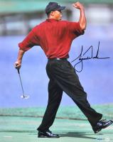 Tiger Woods Signed 22.5x26.5 Framed Photo Display (UDA COA) at PristineAuction.com