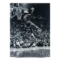 "Michael Jordan Signed Chicago Bulls ""Frozen in Time"" 30x40 Photo (UDA COA) at PristineAuction.com"