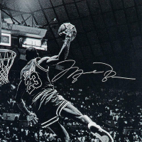 """Michael Jordan Signed Chicago Bulls """"Frozen in Time"""" 30x40 Photo (UDA COA) at PristineAuction.com"""