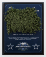 """Dallas Cowboys Texas Stadium """"The Farewell"""" Final Season 8x10 Plaque with Game-Used Turf (Steiner COA) at PristineAuction.com"""
