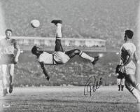 Pele Signed Team Brazil 16x20 Photo (PSA COA)