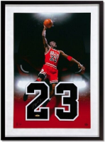 Michael Jordan Signed Chicago Bulls 16x24 Custom Framed Jersey Number Display (UDA COA) at PristineAuction.com