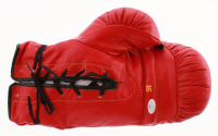 """Larry Holmes Signed Everlast Boxing Glove Inscribed """"Palace 95"""" (JSA COA) at PristineAuction.com"""