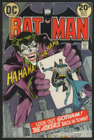 "1973 DC ""Batman"" Issue #251 Comic Book"
