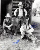Billy Gibbons, Frank Beard, & Dusty Hill Signed 16x20 Photo (Beckett LOA)