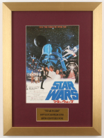 """""""Star Wars: A New Hope"""" 13x17.5 Custom Framed Foreign Movie Poster at PristineAuction.com"""