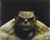 "Stan Lee Signed ""The Hulk"" 16x20 Photo (PSA COA)"