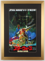 """Star Wars: Episode V - The Empire Strikes Back "" 17x23 Custom Framed Foreign Movie Poster Display"