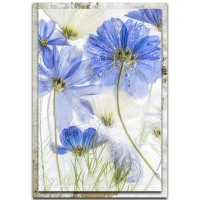 """""""Cosmos Blue"""" 22x32x1 Modern Farmhouse Floral Art on Metal with Distressed Frame by Mandy Disher at PristineAuction.com"""