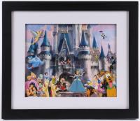 Disney 12.75x14.75 Custom Framed Pin Set Display