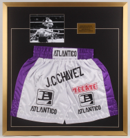 Julio Cesar Chavez Signed 32x34 Custom Framed Boxing Trunks Display (JSA COA) at PristineAuction.com