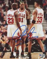 Dennis Rodman Signed Chicago Bulls 8x10 Photo (Beckett COA) at PristineAuction.com