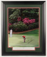 Arnold Palmer Signed 18x23 Custom Framed Photo Display (JSA LOA) at PristineAuction.com