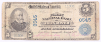 1902 $5 Five Dollars U.S. National Currency Large Bank Note - The First National Bank of Iron River, Michigan at PristineAuction.com