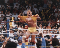 Hulk Hogan Signed WWE 16x20 Photo (Schwartz COA) at PristineAuction.com
