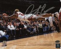 Dennis Rodman Signed Chicago Bulls 8x10 Photo (Schwartz COA) at PristineAuction.com