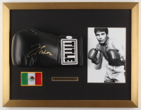 Julio Cesar Chavez Signed 17x22 Custom Framed Boxing Glove Display (JSA COA) at PristineAuction.com