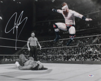 Sheamus Signed WWE 16x20 Photo (PSA COA) at PristineAuction.com