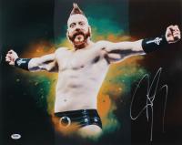 Sheamus Signed WWE 16x20 Photo (PSA COA) at PristineAuction.com