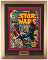 "Vintage 1977 ""Star Wars"" Issue #2 Marvel 16x20 Custom Framed Comic Book Display at PristineAuction.com"