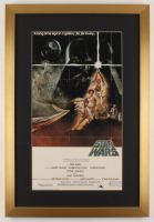 """""""Star Wars: Episode IV -  A New Hope"""" 17x25 Custom Framed Movie Poster Display at PristineAuction.com"""