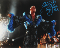 """Ric Flair Signed WWE 16x20 Photo Inscribed """"Nature Boy"""" & """"16x"""" (PSA COA) at PristineAuction.com"""