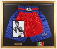 Julio Cesar Chavez Signed 28x32 Custom Framed Trunks Display (JSA COA) at PristineAuction.com
