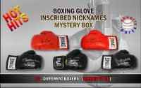 Schwartz Sports Hot Hits Boxing Stars Signed Nickname Inscribed Boxing Glove Mystery Box – Series 1 (Limited to 20) at PristineAuction.com