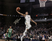 Giannis Antetokounmpo Signed Bucks 16x20 Photo (JSA COA) at PristineAuction.com
