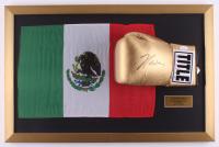 Julio Cesar Chavez Signed 17x26 Custom Framed Boxing Glove (JSA COA) at PristineAuction.com